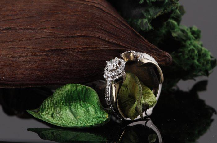 Custom Engagement Ring With Hinge Design